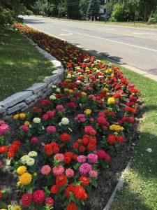 Flowers on Lexington Ave