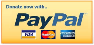Donate to PayPal with credit card logos