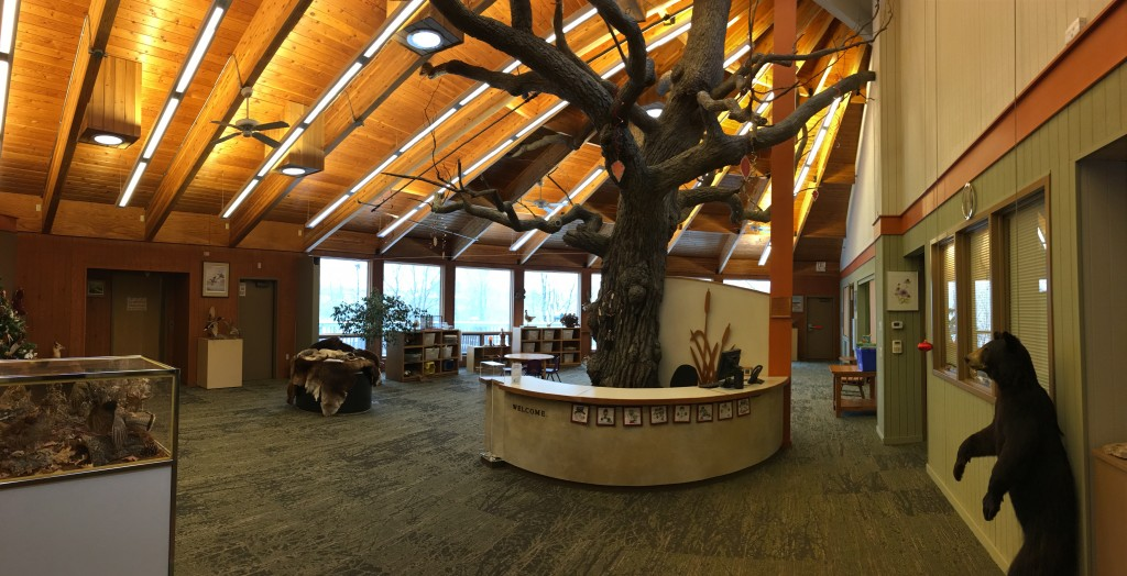 Nature Center reception desk and tree